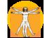 Leonardo Da Vinci's 'Vitruvian Man' illustration