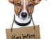 "Small dog with sign around his neck that says, ""Plan before it's too late!"""